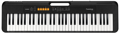 Picture of Casio CT-S100